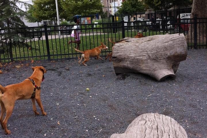 Pet Friendly Schuylkill River Dog Park