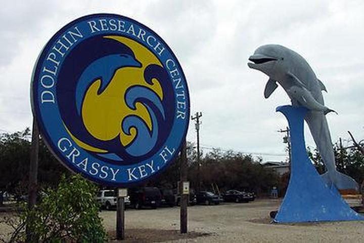 Pet Friendly Dolphin Research Center