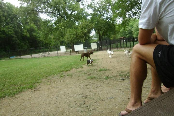 Pet Friendly Frazier Dog Park