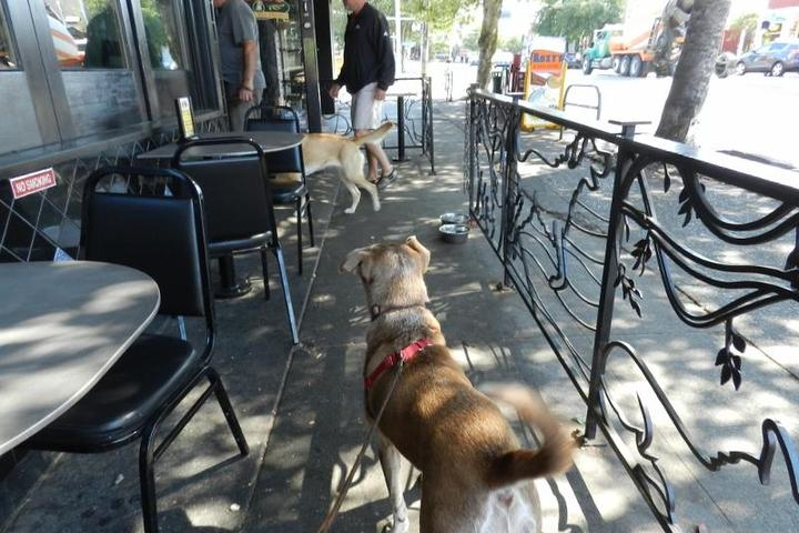Pet Friendly Norm's Eatery & Ale House