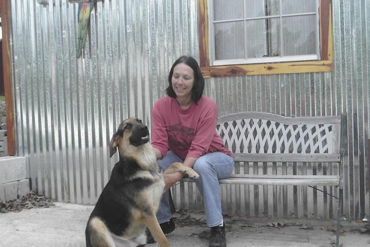 Pet Friendly Nora's Ark Pet Resort