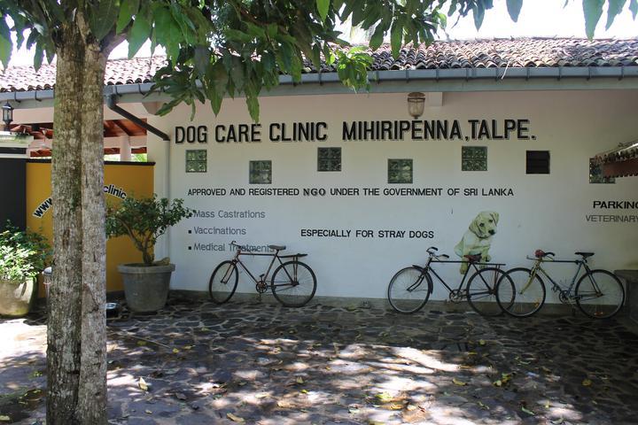 Pet Friendly Dog Care Clinic e.V.