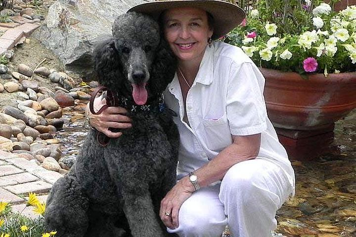Pet Friendly Shear Pet Pet Salon