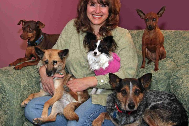 Pet Friendly North Star Canines