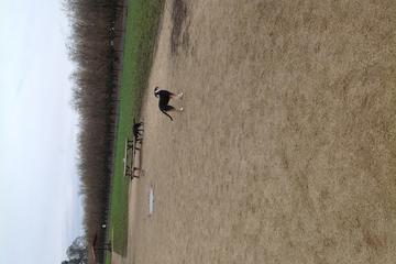 Pet Friendly Keizer Rapids Dog Park