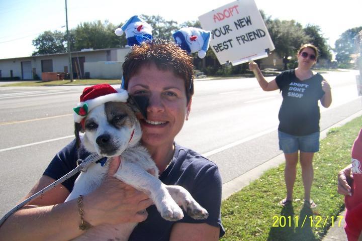 Pet Friendly Love All Beings Pet Sitting, LLC
