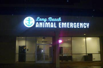 Pet Friendly Long Beach Animal Emergency