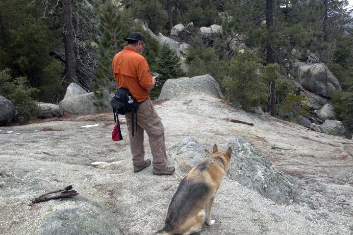 Pet Friendly Black Mountain Trail