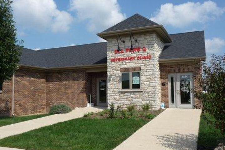 Pet Friendly All Paws Veterinary Clinic