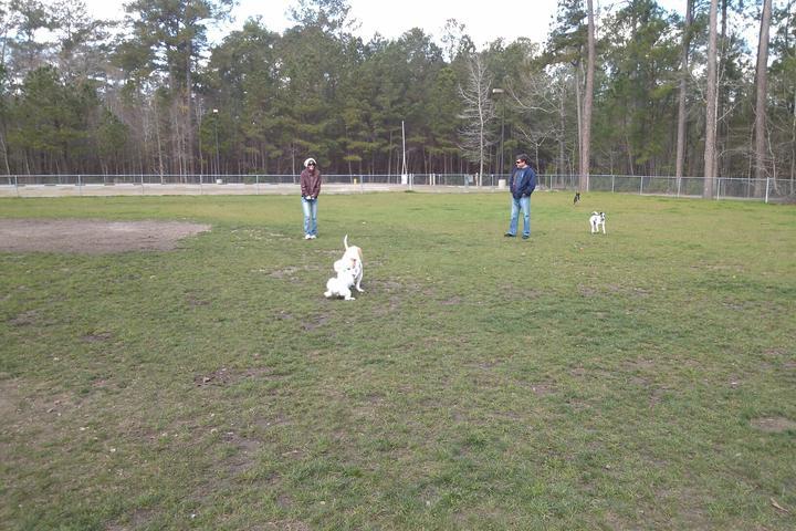 Pet Friendly Wannamaker County Park