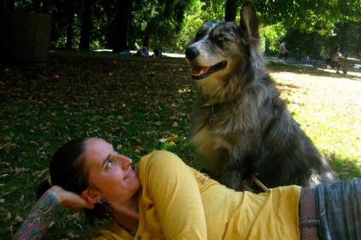 Pet Friendly Paws Out! Dog Walking and Pet Sitting Services