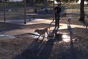 Pet Friendly Christopher Columbus Dog Park
