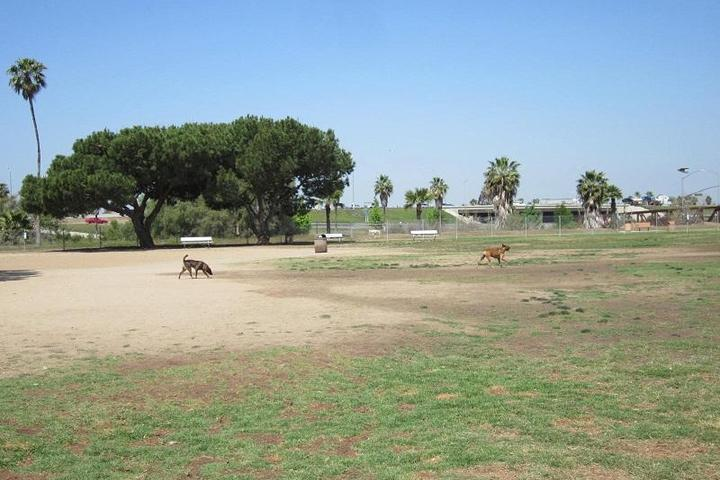 Pet Friendly Orange Dog Park