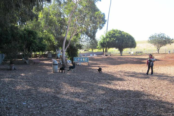 Pet Friendly Huntington Beach Best Friend Dog Park