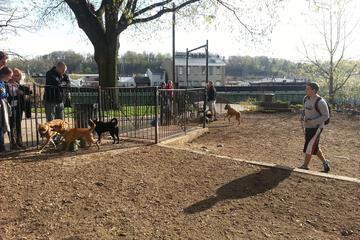 Pet Friendly Pretzel Dog Run at Manayunk Park
