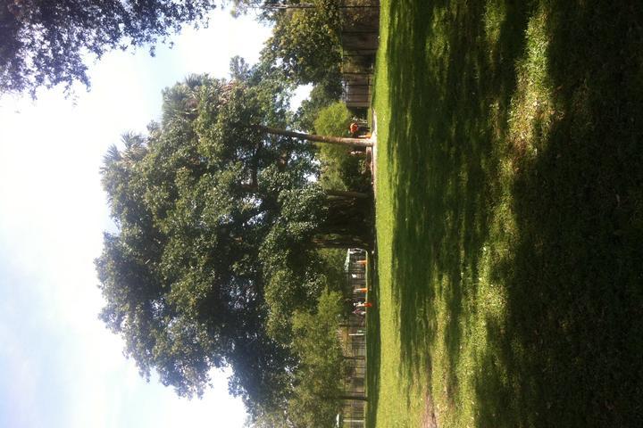 Pet Friendly Windmill Dog Park