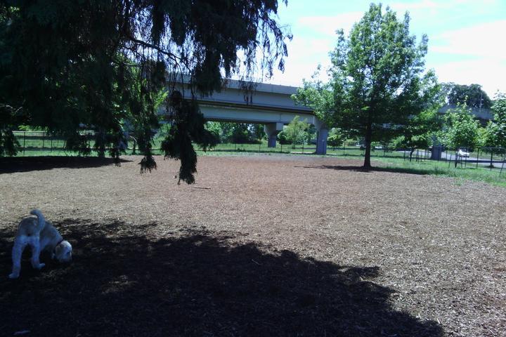 Pet Friendly Corvallis Dog Park