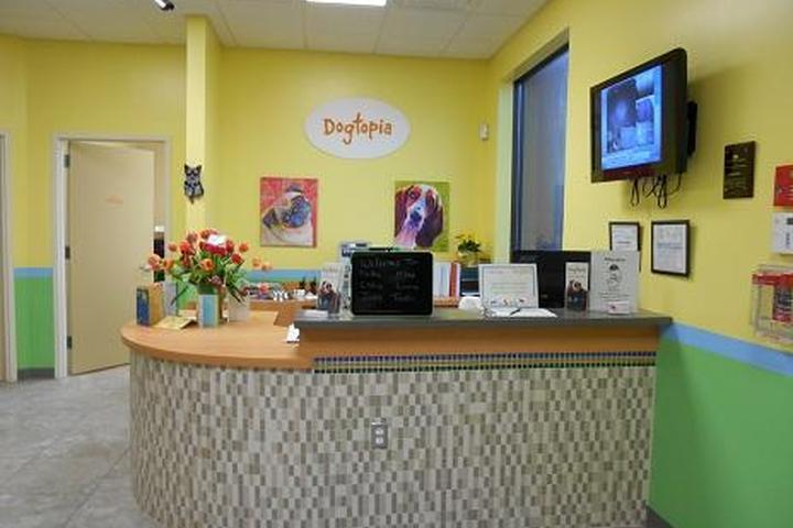 Directory of Doggie Daycare & Boarding in Old Bridge