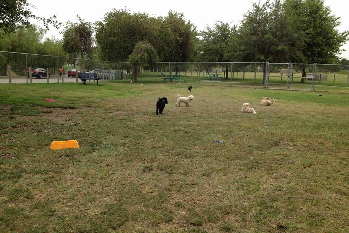 Pet Friendly Hulda Crooks Dog Park