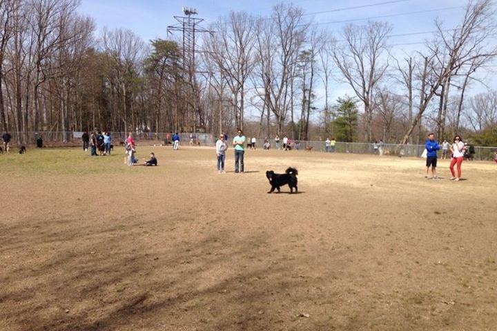 Pet Friendly Prince William County Dog Park