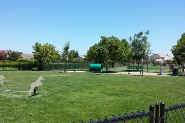 Pet Friendly King Park Dog Park