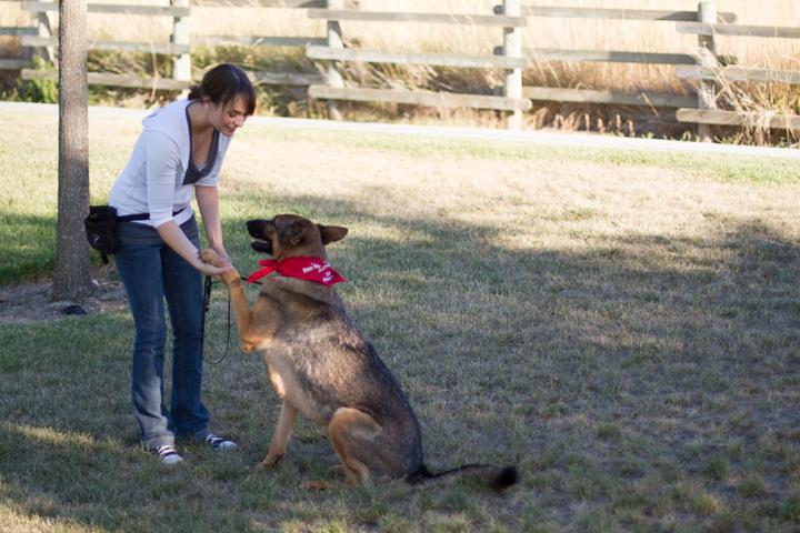 Pet Friendly Walk SLO