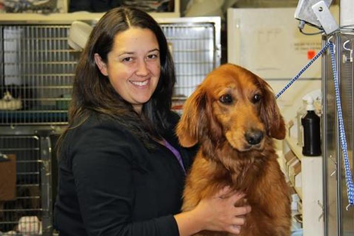 Pet Friendly Mount Tabor Animal Hospital