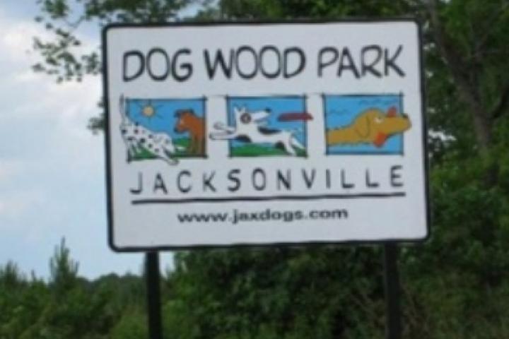 Pet Friendly Dog Wood Park