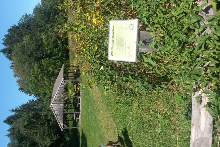 Pet Friendly Belding Wildlife Management Area