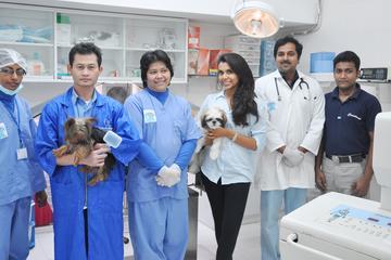 Pet Friendly Capital Veterinary Centre LLC