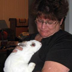 Rabbit and Pet Sitters and More