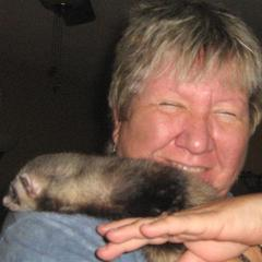 Ferret and Pet Sitters and More
