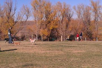 Pet Friendly Wynetka Ponds Dog Park