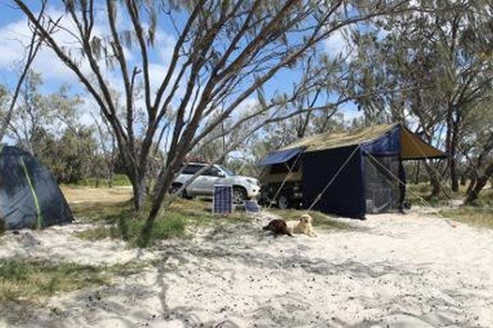 Pet Friendly Flinders Beach - Straddie Camping