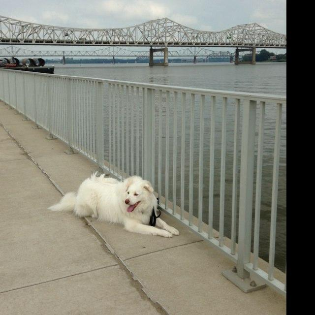 A Day At Waterfront Park
