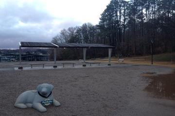 Pet Friendly Pet Safe Concord Park Dog Park