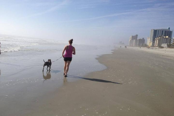 Pet Friendly Waggly Tails of Myrtle Beach