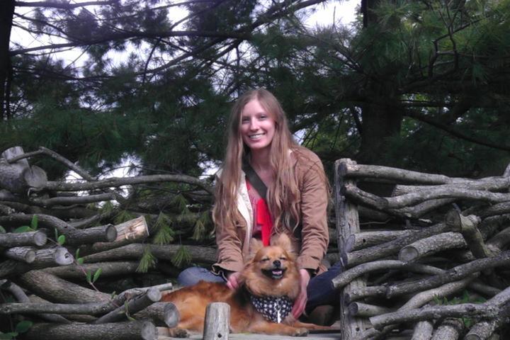 Pet Friendly Canine Redux