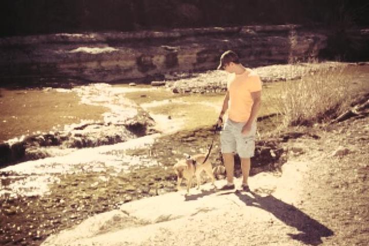 Pet Friendly Metropolitan Park At Walnut Creek