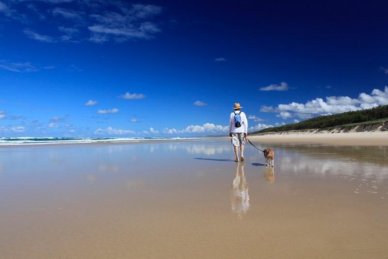Dog Friendly Beaches North Stradbroke Island