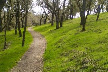 Pet Friendly Jim Green Trail