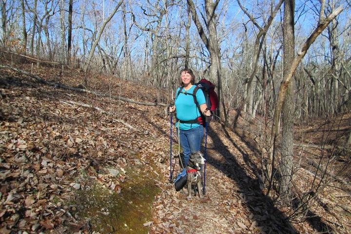 Pet Friendly Pine Mountain Trail