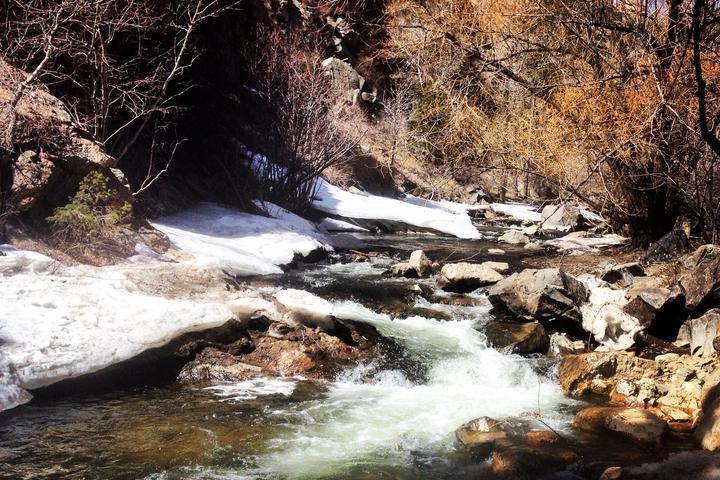 Pet Friendly Bear Creek Trail