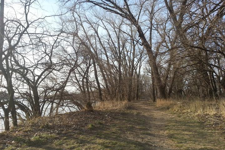 Pet Friendly Riverfront Park