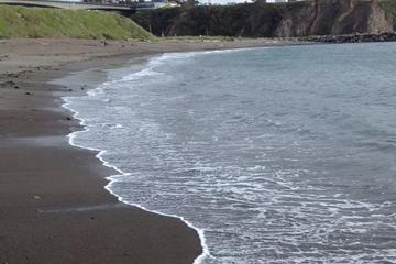 Pet Friendly Noyo Beach