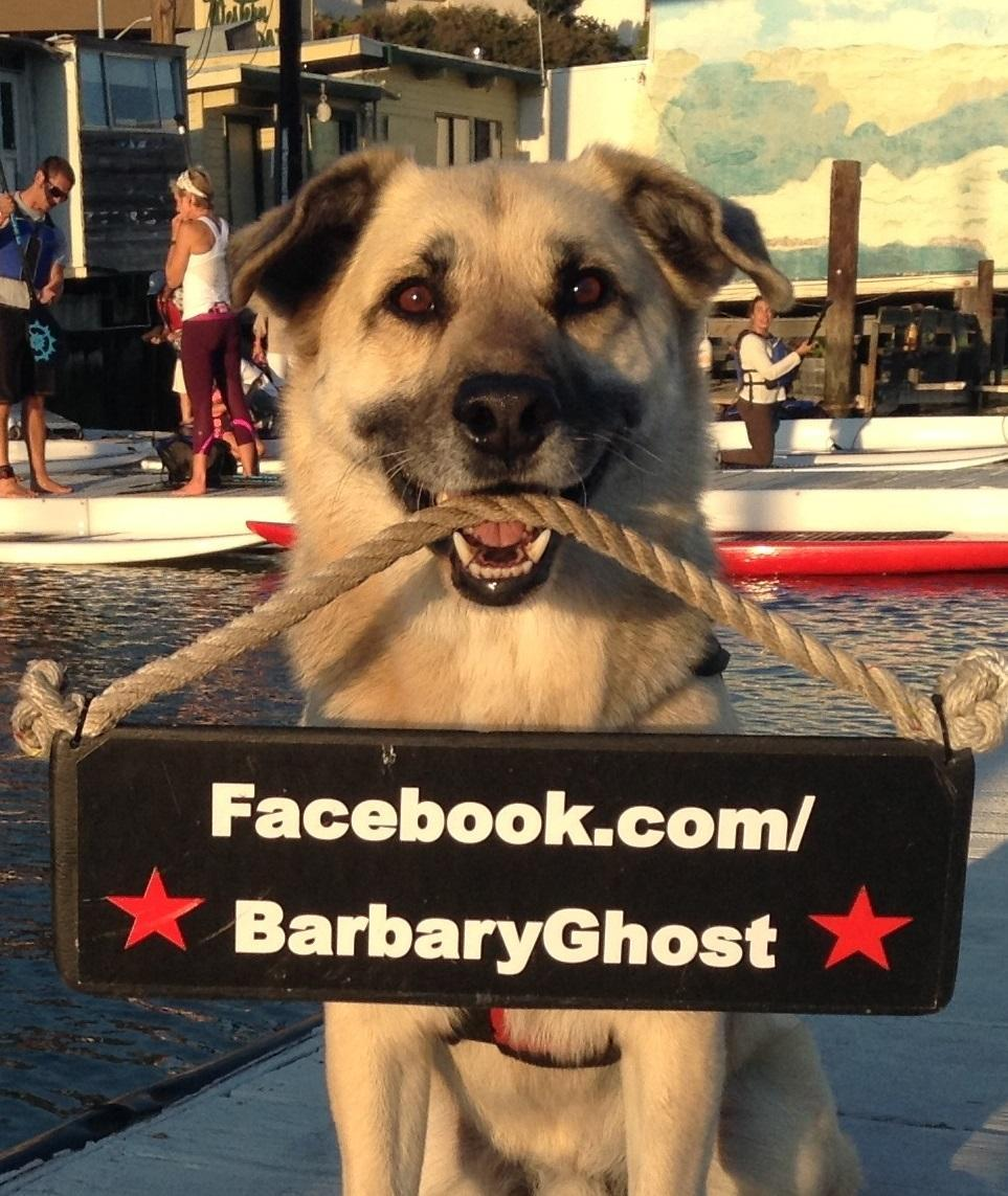 Niko, First Mate aboard charter boat Barbary Ghost