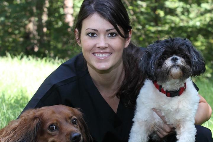 Pet Friendly In Good Hands Pet Care