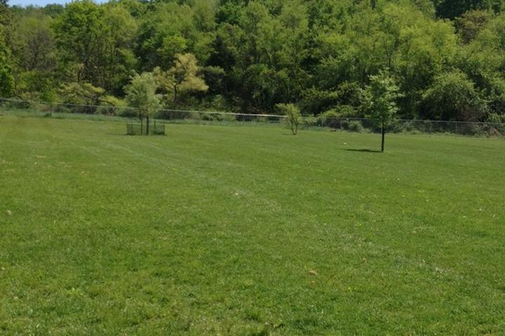 Pet Friendly Murrysville Community Park Dog Park