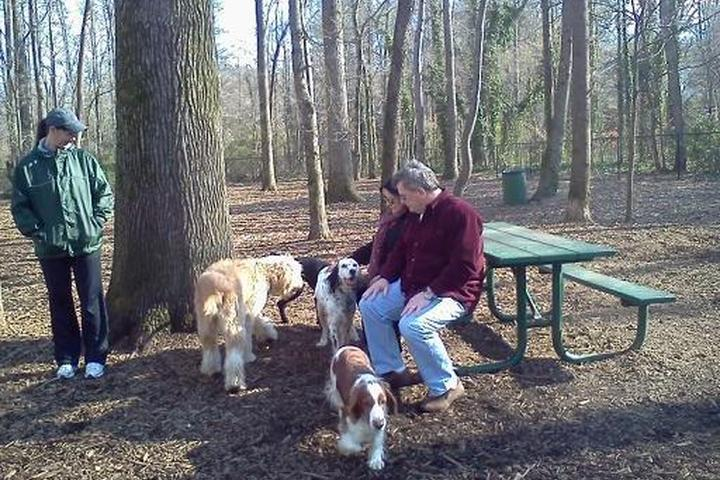Pet Friendly Sweat Mountain Dog Park