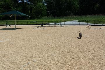 Pet Friendly Wayne Dog Park